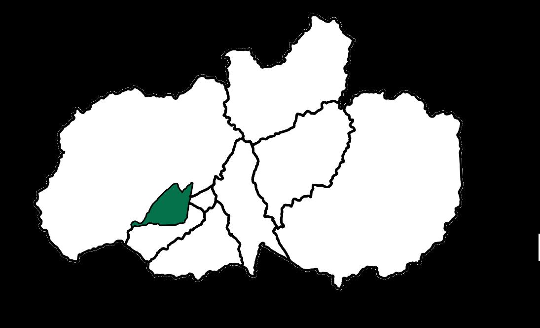 Tisaleo